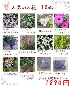 送料無料!【当店農場生産】人気のお花10鉢+ガーデニングの土15L+肥料のお試しセット☆