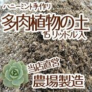 リットル 多肉植物