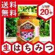 マヌカハニーUMF認定20+ 250g【送料無料】抗生物質をみつばちに与えないオーガニック養蜂。ハニーマザーのマヌカハニーはキャラメルのようなコクと香ばしさを持つ、最高品質の「生マヌカハニー」です。100%純粋非加熱 生はちみつ