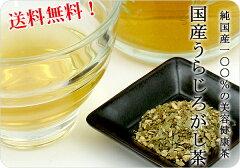 排石茶といわれる国産うらじろがし茶を送料無料でお届けします♪ ※20P入り×3袋でのお届けと...