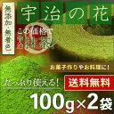 ● 抹茶 粉末「宇治の花」 100g x 2個セット ほんぢ園 < 1...