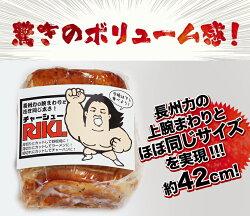 本気の焼豚21Kg【10P23Jan16】
