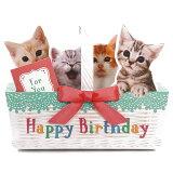 バースデーカード メロディカード P240 ねこかご サンリオ 子ねこたちが鳴き声で歌うミュージック誕生日カード Birthday Card グリーティングカード お誕