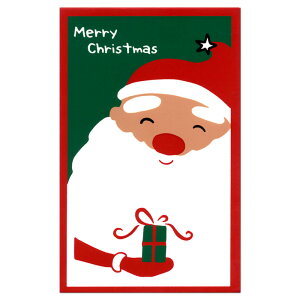 クリスマス シルク ポチ袋 サンタプレゼント 543-1 金封 天一堂