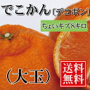 デコポン 訳あり 【送料無料】大玉8kg 愛媛県大三島産 で...