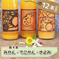 ホリ田ヤみかんジュース