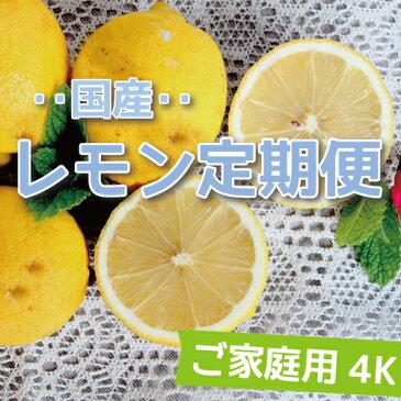【送料無料】愛媛県大三島産【国産レモン定期便】【ご家庭用】【4K×4回】