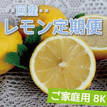 【送料無料】愛媛県大三島産【国産レモン定期便】【ご家庭用】【8K×4回】