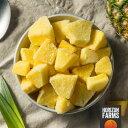 フルーツ 冷凍 パイナップル カット 1kg コスタリカ産