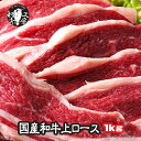 宮崎県産 黒毛和牛 上ロース たっぷり 500g×2パック 計 1kg 小分けで便利 あす楽 お歳暮 ギフト 和牛ロース 焼き肉 BBQ 牛ロース 和牛 肉 焼肉 バーベキューセット バーベキュー 肉 セット BBQ bbq