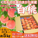 桃 訳あり おまかせ 白桃 5kg 13玉〜20玉 山形県産...