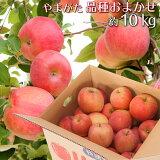 りんご 訳あり 品種おまかせ 10キロ 山形県産 ご家庭用 産地直送 林檎 リンゴ 10kg 送料無料【沖縄県および一部離島を除く】