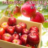 紅玉 訳あり りんご 約9.5キロ 山形県産 ご家庭用 小玉 産地直送 林檎 リンゴ 約9.5kg【数量限定】