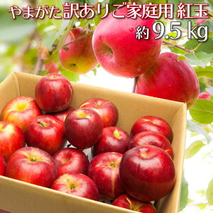 紅玉 訳あり りんご 約9.5キロ 山形県産 ご家庭用 小玉 産地直送 林檎 リンゴ 約9.5kg