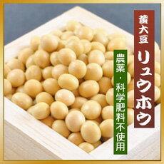 秋田県産の契約栽培大豆 黄大豆 リュウホウ 500g