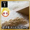 魚沼の清らかな水と大地で育まれた日本一の最高級米です。味がよく粘りもある非常に人気のコシヒカリです。新米入荷!放射能検査済み  【送料無料】 平成23年産 魚沼産コシヒカリ 30kg(10kg×3) / 【smtb-TK】 [ 【米/お米/国産/新潟産/魚沼産/コシヒカリ/こしひかり/通販/ランキング】02P20Dec11新潟
