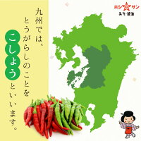 九州方言で唐辛子を「こしょう」といいます