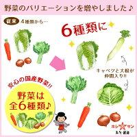 野菜のバリエーションが増えました