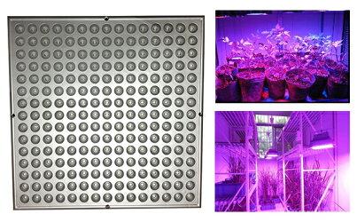 【最新のSMD使用】led植物育成植物育成ライト水耕栽培植物育成LED植物育成パネル水耕栽培ランプ植物育成パネルライトハイドロカルチャーランプ園芸プラントライト吊り下げ用フック付きワイヤー225LED14Wレッド&ブルー