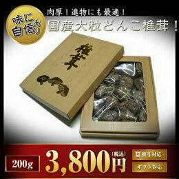 進物にも!たっぷり200g!国産大粒どんこ椎茸