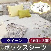 ボックスシーツ / クイーン / 160×200cm / ブランチ / エジプト綿100% / ホームコンセプト / RCPブランチ