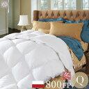冬用 クイーン 210cmx210cm 羽毛布団 800フィ...