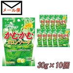 三菱食品かむかむメロンソーダ10個セット【メール便送料込】【期間限定】