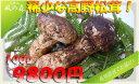 和歌山県高野山より採れたてを直送☆動画あり☆(国産松茸)希少な高野松茸!