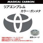 HASEPRO/ハセプロ:マジカルカーボン リア エンブレム フィールダー 120系 ガンメタ/CET-12GU/
