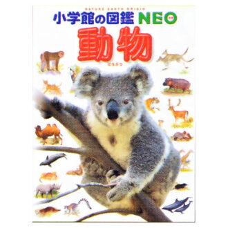 小學館指南新系列百科全書新動物學,植物學和昆蟲 kabutomsikvagatamsci