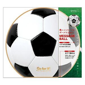 カラー色紙 丸形 サッカーボール柄 ミドリカンパニー (33196006)