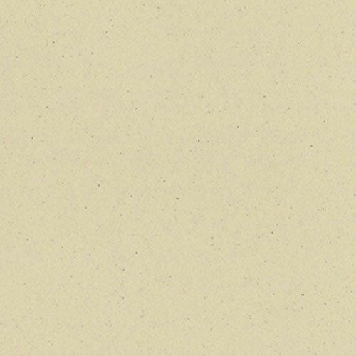 値下げ商品 Bazzill バジルカラーペーパー ストロー 300372 12インチ【ペーパーインテリジェンス】