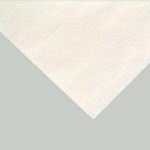 ファイバークラフト工作紙 白1組(10枚) 86031450