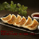 【送料無料】手作り80個ニンニクなし焼き餃子 作りたて個別包装 中華点心 冷凍ギョーザ ニンニクなしぎょうざ