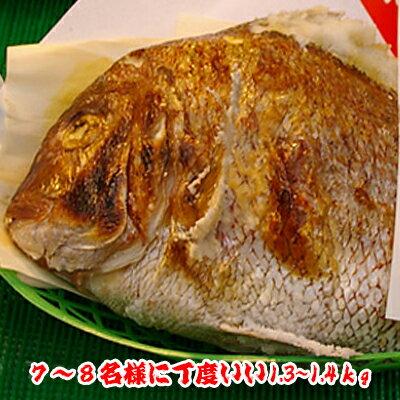 焼鯛7〜8名さま位の大きさ<焼き鯛11月下旬発送分>【長寿のお祝い・お食い初め祝膳に焼き鯛】