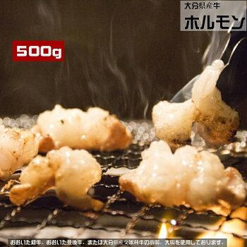 大分県産牛ホルモン500g(冷凍)