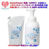 HANDSスタートセットボトル1本詰め替え1本セット
