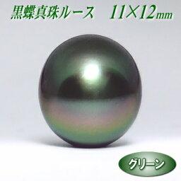 黒蝶真珠ルース グリーンカラー 11.3×12.4mm ( タヒチ黒蝶真珠 パールルース )