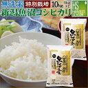 【150円クーポン キャッシュレス5%還元】無洗米 特別栽培...
