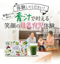 【公式】HAPPYVEGE通常購入1箱30袋入り青汁授乳母乳栄養産後ダイエット野菜不足九州産送料無料はぐくみプラス公式はぐくみぷらす