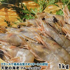 父の日プレゼント 食べ物 ギフト 天使の海老1Kg ニューカレドニア産 送料無料 ブルーシュリンプ 30〜40尾