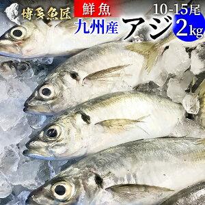 九州産 天然真アジ 2kg 1匹あたり 200g〜300g前後 市場直送 鮮魚 鯵 刺身 アジフライ 海産物 海鮮 お取り寄せ おつまみ
