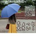 [婦人傘] fancy rain O:KS 水玉プリント65cmジャンプ傘 [レディース傘/女性用/母の日/プレゼント/敬老の日/ギフト/オーバーロック]