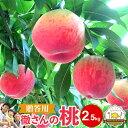 ○○さんちの桃