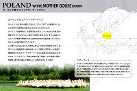 シングル京都西川ローズ羽毛ポーランド産マザーグース二層式超長綿羽毛ふとんダウンパワー430