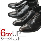 6cmUP!��������åȥ��塼��[MM/ONE](���२��������åȥ��塼����)�»Υ������/MPT123-1-H-����ɿ奷�塼��������ʤɡ�˭�٤˼谷����!![�ӥ��ͥ����塼��/�ȡ��륷�塼��/�֥�å����֥饦���Ⱪ����]
