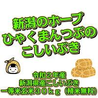令和2年産新潟県産こしいぶき一等米玄米30kg(精米無料)