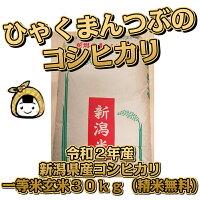 令和2年産新潟県産コシヒカリ一等米玄米30kg(精米無料)百萬粒ひゃくまんつぶ送料無料こしひかり