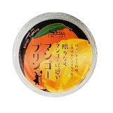 サラマンジェフ:「限りなくマンゴーに近いマンゴープリン(8個)」まるでマンゴーを食べているような味わい!