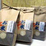 のじファーム:文殊のお米令和元年産福井県産コシヒカリ・福井県産あきさかり食べ比べセット(3種各1kg)